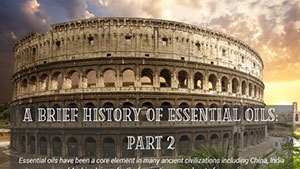 Brief History Part 2