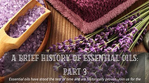 Brief History Part 3