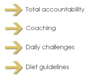 support-accountability-coaching