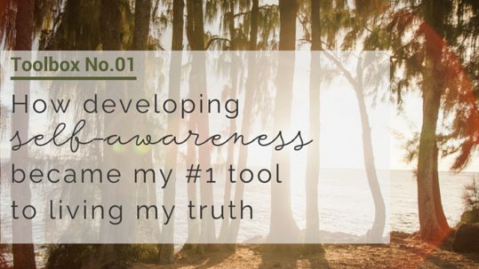 self-awareness-toolbox-no1